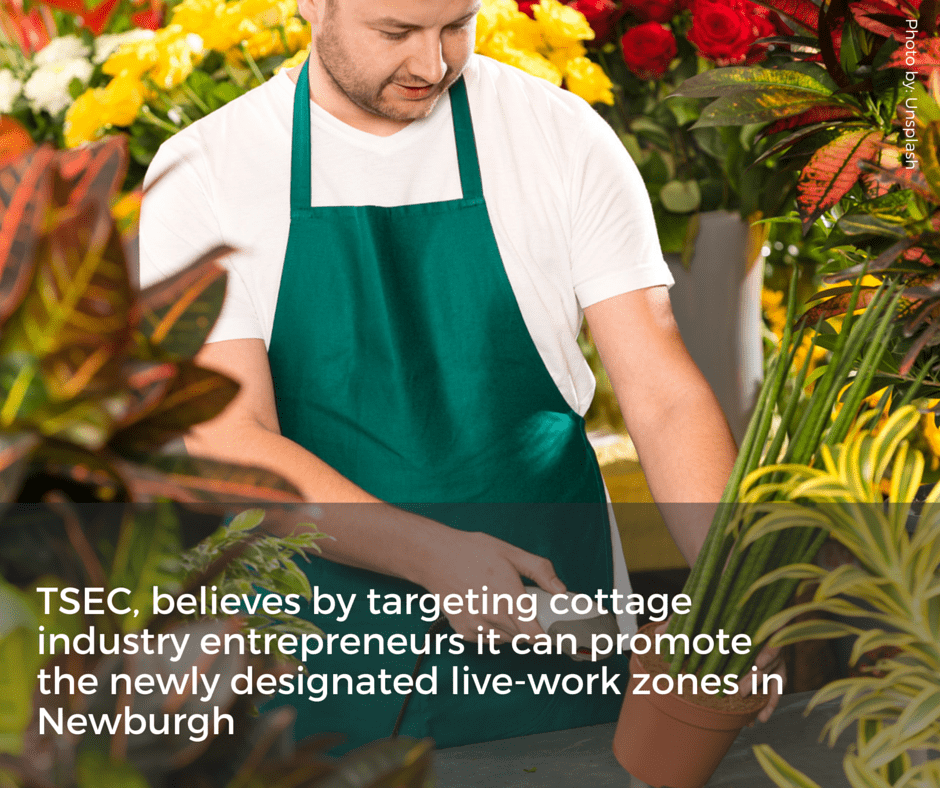Cottage and live-work zones are supported and encouraged by TSEC